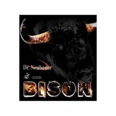 Dr. Neubauer - Bison