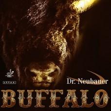 Dr. Neubauer - Buffalo