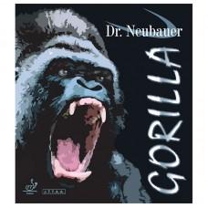 Dr. Neubauer - Gorilla