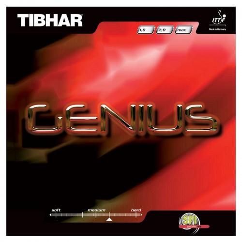 Tibhar - Genius