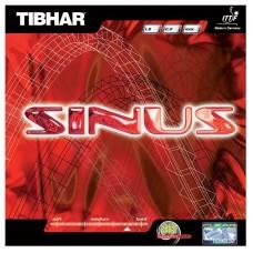 Tibhar - Sinus