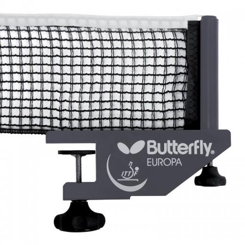 Butterfly - Europa